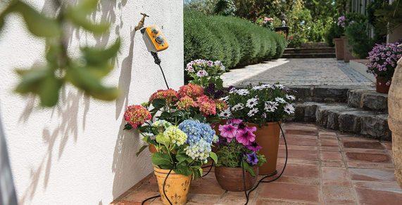 programador de riego con flores