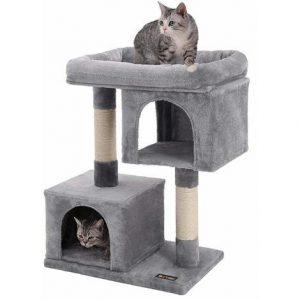 gatos en un árbol para gato