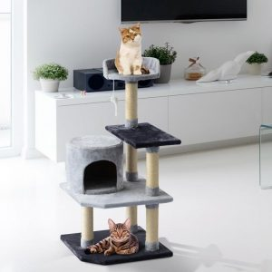 árbol para gato en el salon