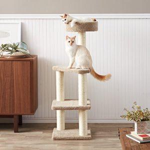 gatos jugando en un árbol para gato pequeño