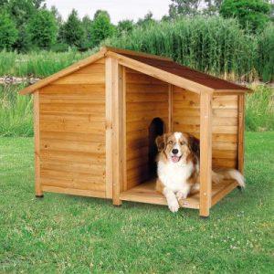 perro en una caseta de perro pequeña