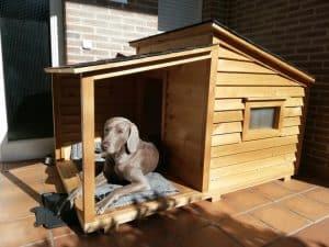 caseta de perro de madera grande