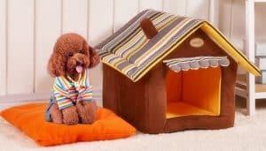 caseta de perro de tejido