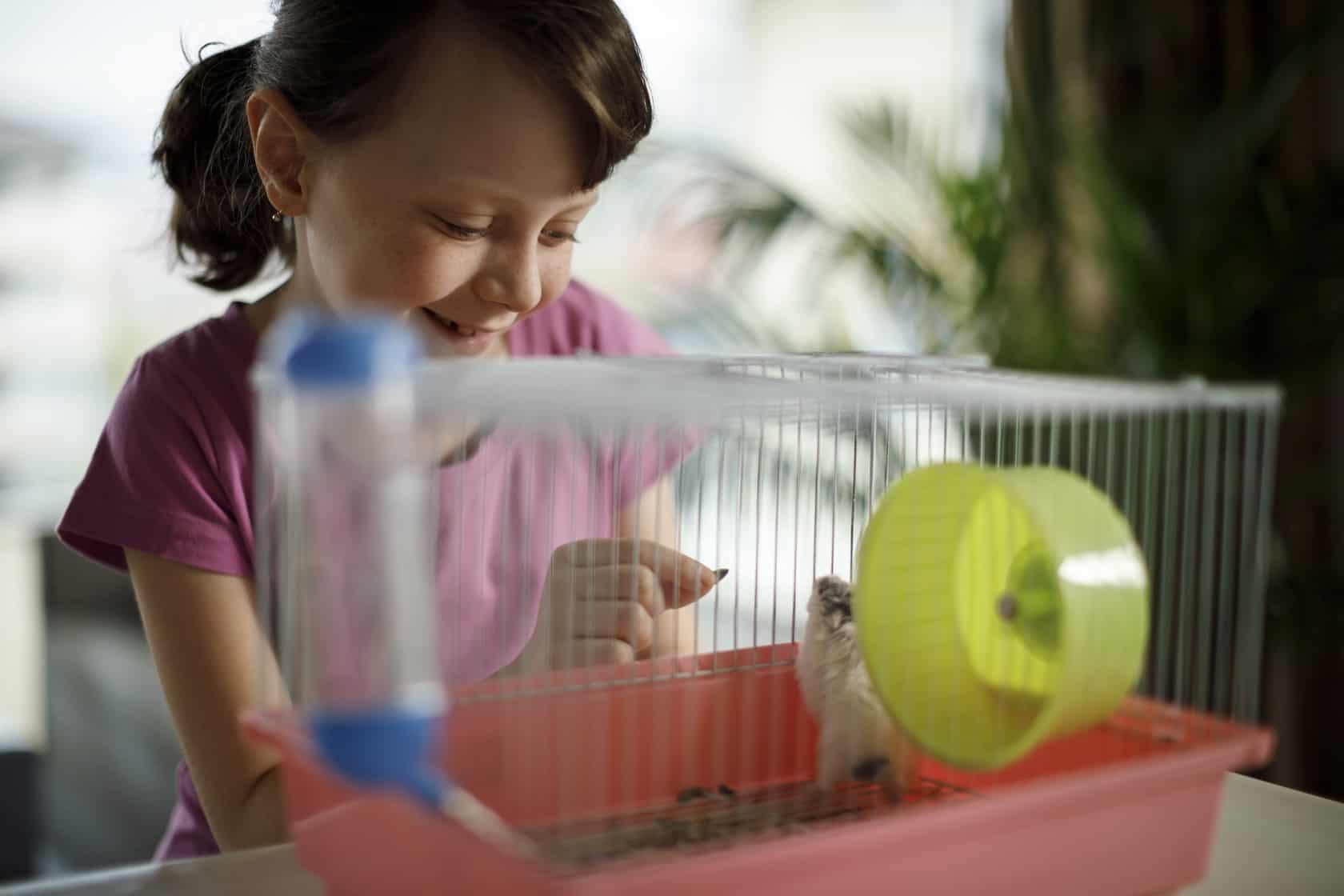 niña jugando con un hamster