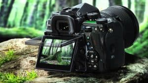 cámara de fotos réflex con pantalla reglable
