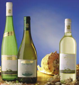 botellas de vino blanco