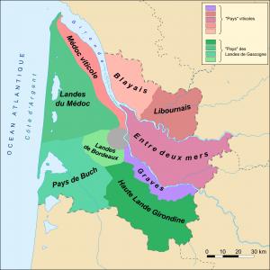 region del vino de Burdeos