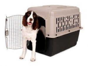 caja para perro portátil