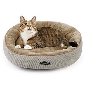 cama para gato con gato