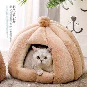 gato en una cama para gato cerrada
