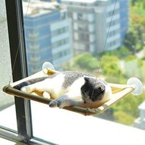 cama para gato de ventana