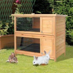 varios conejos fuera de una jaula para conejo