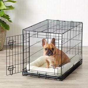 perro pequeño en una caja para perro
