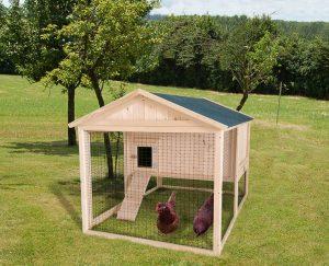 gallinero con gallinas dentro