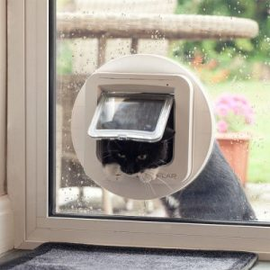 gato asomado a una gatera electrónica