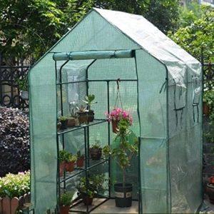 invernadero de jardín pequeño
