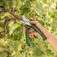 tijeras de podar para cortar ramas