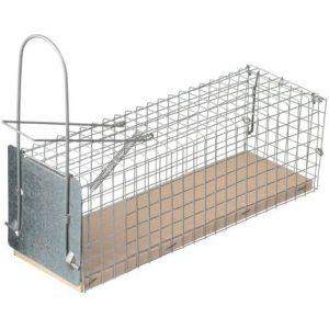 trampa para ratas de hierro